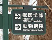北海道大学 動物医療センター